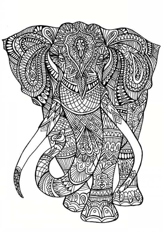 طرح رنگ آمیزی فیل
