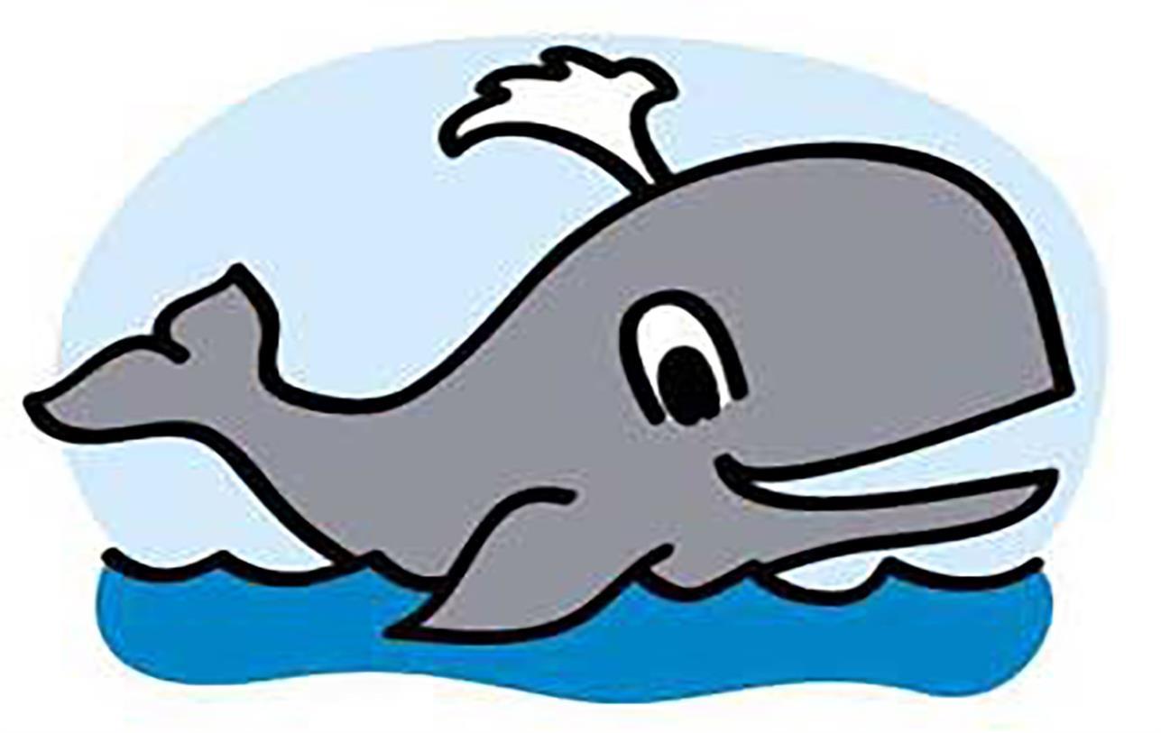 نقاشی نهنگ با رنگ آمیزی های جالب برای کودکان