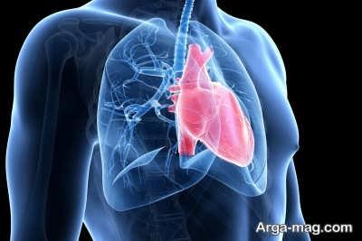 دردها و علائمی که در رابطه با بیماری قلبی باید جدی گرفته شود
