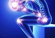 درمان گیاهی آرتروز