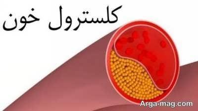 معرفی راه های کارآمد در کاهش کلسترول خون