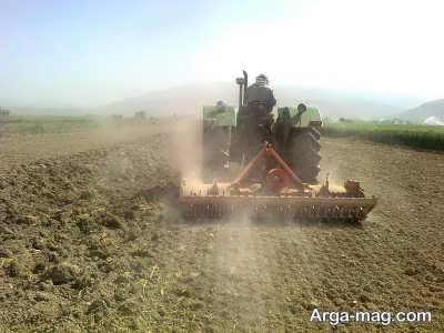 شخم زدن زمین برای کاشت سییر