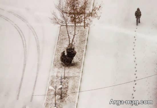 عکس زیبای هنری در روز برفی
