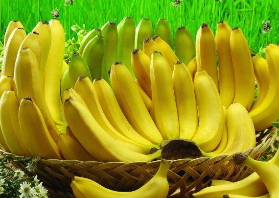 در ژاپن موز با پوست خوراکی پرورش می دهند