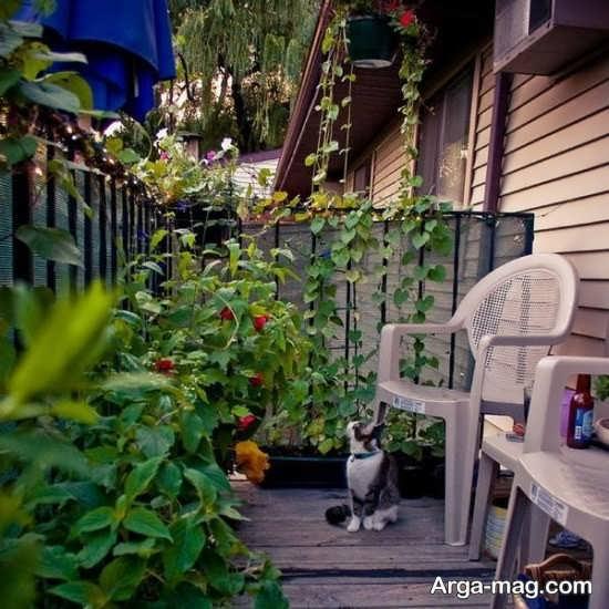 تزیین بالکن با گیاهان سبز