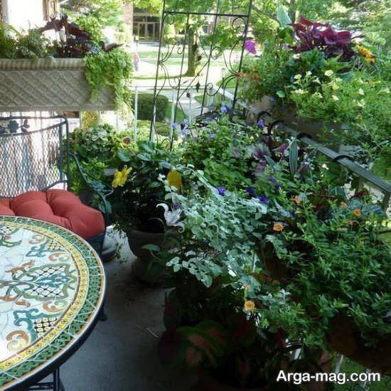 تزیین بالکن با گیاهان زینتی