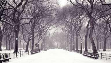 متن زیبا درباره زمستان