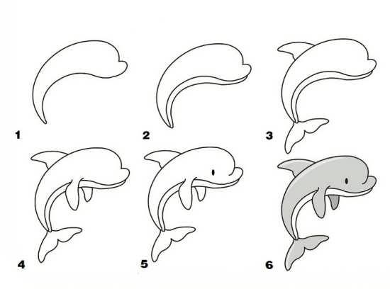 مراحل کشیدن دلفین برای بچه ها