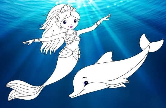 رنگ آمیزی دلفین