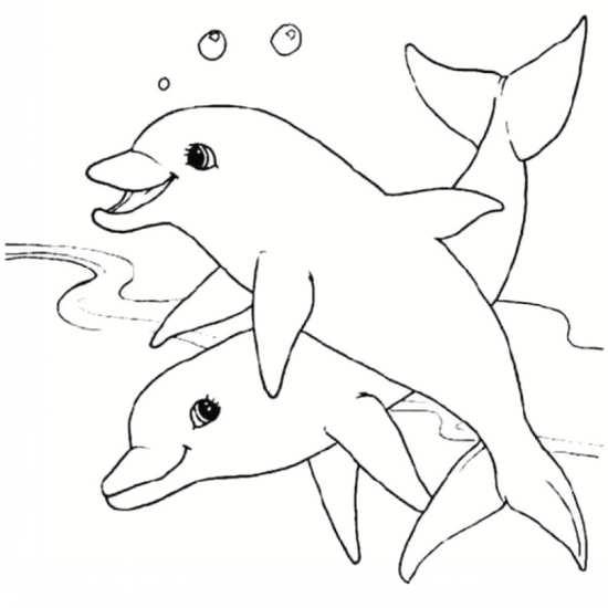 رنگ آمیزی دلفین برای کودکان