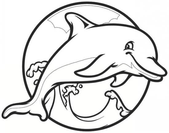 نقاشی زیبا و جالب دلفین