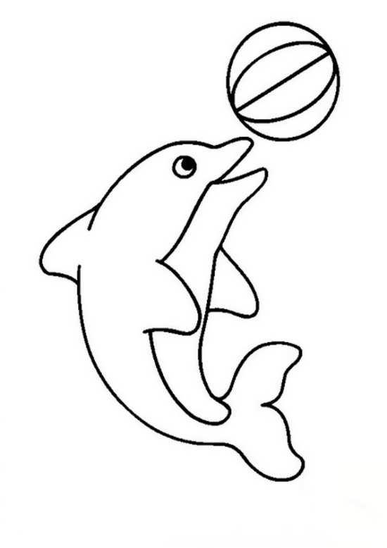 نقاشی جالب دلفین برای بچه ها