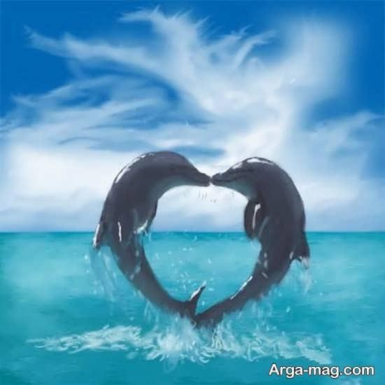 دلفین عشق