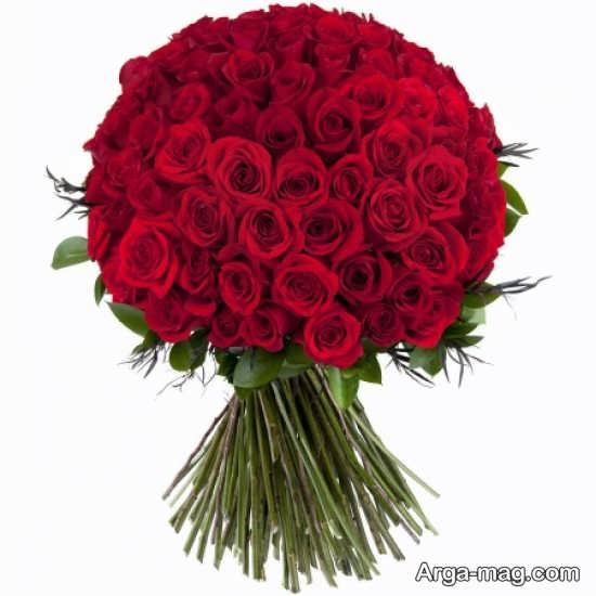 عکس دسته گل های رز قرمز