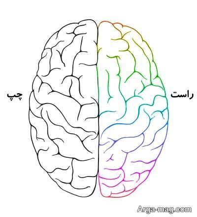 خلاقیت در نیمکره راست مغز