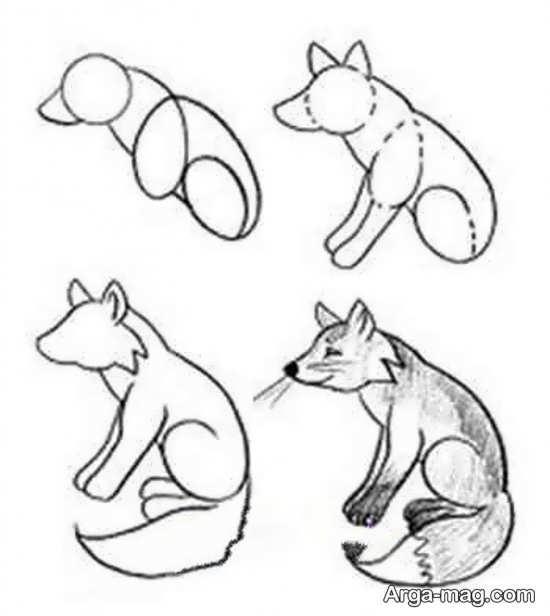 مدل برای طراحی روباه