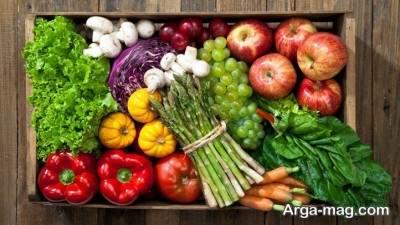 برنامه غذایی رژیم گیاه خواری