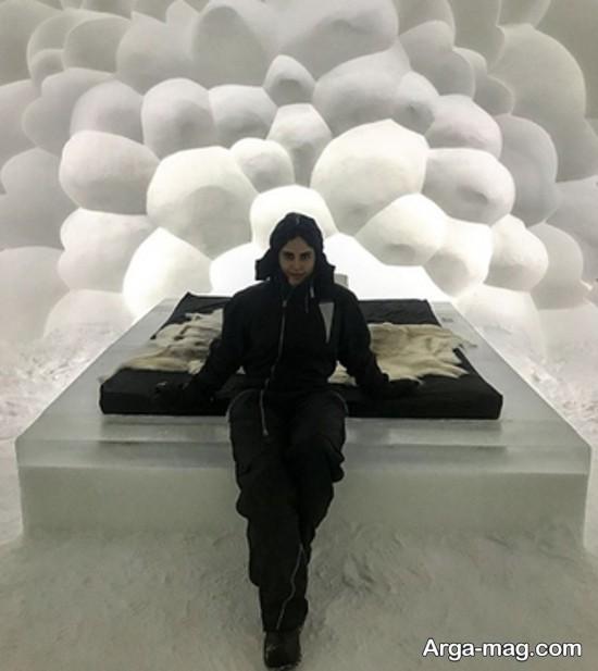 عکس های الناز شاکردوست در هتل یخی