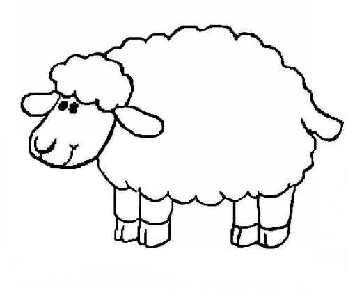 نقاشی زیبا گوسفند برای بچه ها