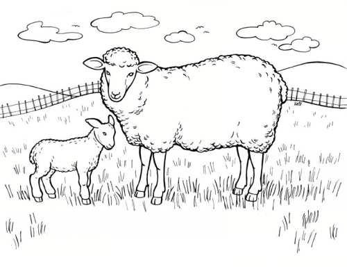 نقاشی زیبا و ساده گوسفند