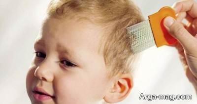 درمان گیاهی شپش سر در کودکان