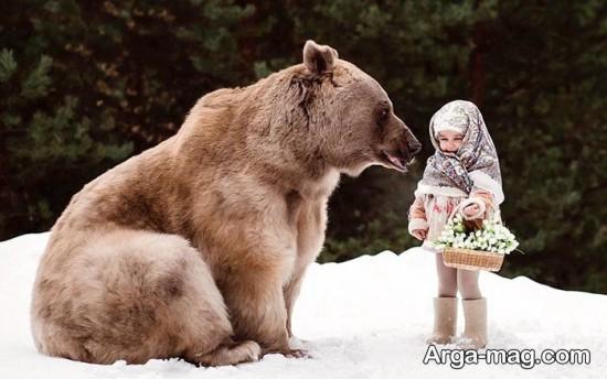 خرسی در روسیه