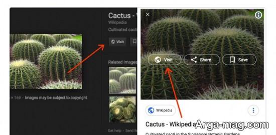 گوگل و جستجوی تصاویر