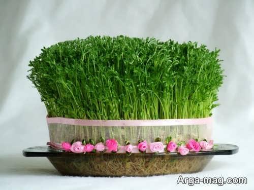سبزه عدس زیبا