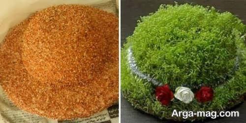 آموزش کاشت سبزه عید با خاکشیر