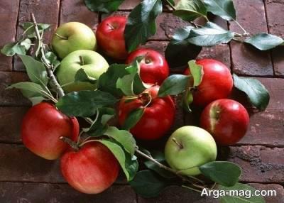 میوه های مهم و مفید برای بیماران دیابتی