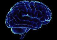 راه های طلایی افزایش قدرت ذهن
