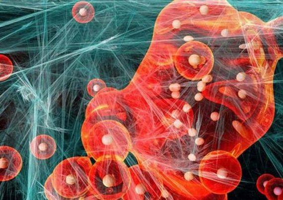 قطع خونریزی داخلی انسان با نانو ذرات مغناطیسی