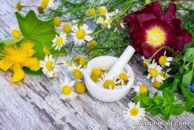 درمان خارش سر با گل ختمی