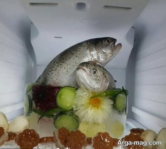 ماهی یخچال عروس با طراحی شیک