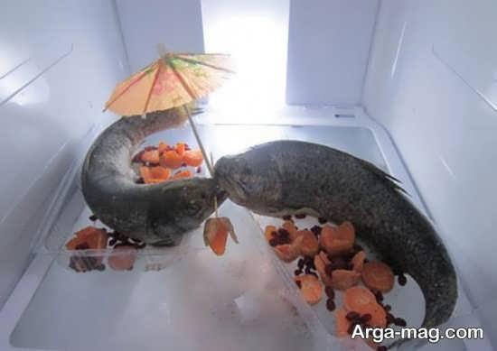 تزیین زیبای ماهی یخچال عروس