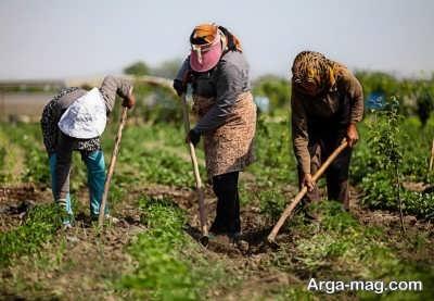 پرداخت وام به روستاییان