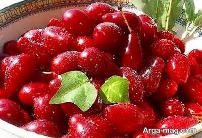 میوه مفید برای دیابتی ها