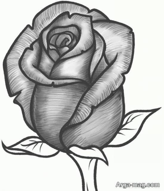 طرح زیبای گل