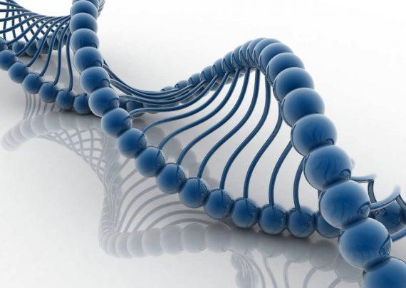 الگوریتم تکاملی ژنتیک
