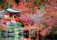 عکس های زیبای ژاپن در یک روز بارانی