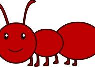 آموزش نقاشی مورچه