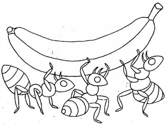 نقاشی جالب و زیبا مورچه