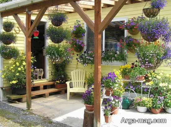 تزیین خاص دیوار حیاط