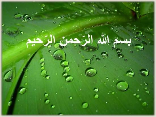 مدل بسم الله با پس زمینه سبز