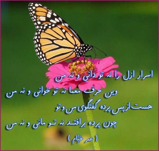 عکس نوشته عمر خیام با تم های زیبا