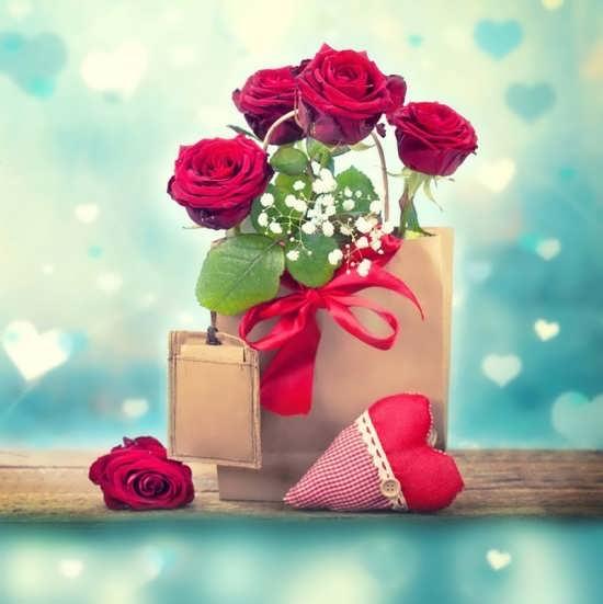 عکس پروفایل از گل رز برای تلگرام