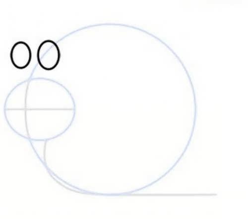 مدل رنگ آمیزی حلزون