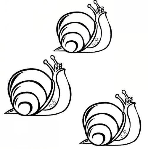 نقاشی های حلزون