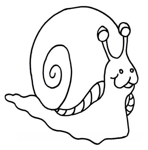 نقاشی ساده حلزون