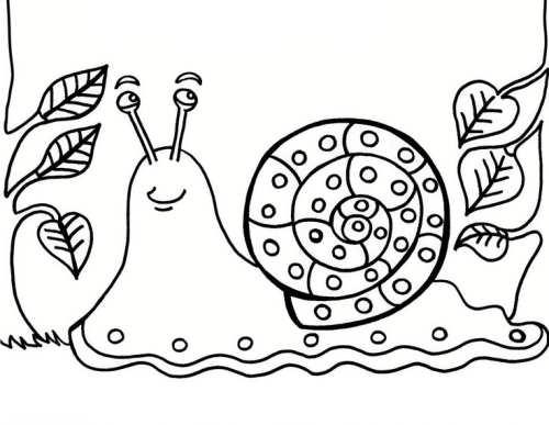 رنگ آمیزی و نقاشی حلزون